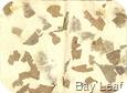 Bay Leaf Paper